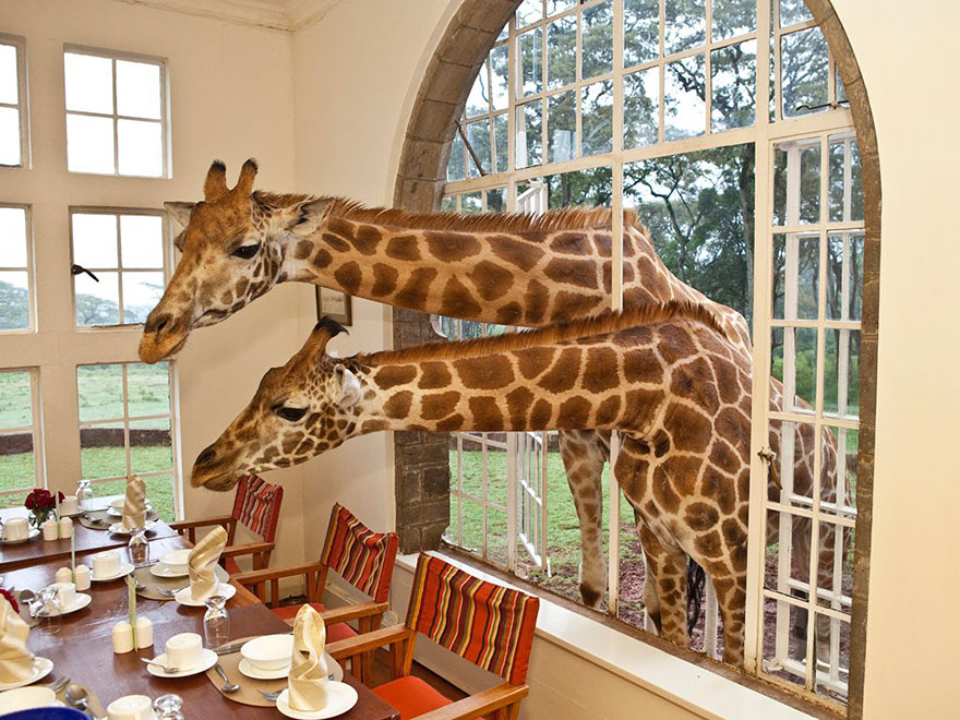 unusual-themed-hotels-6-3