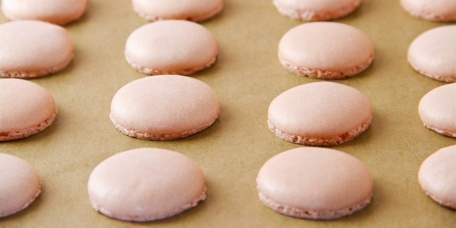 French macaron shells (pronounced macaroon a popular buttercream filled meringue type cookie or biscuit) on baking sheet lined with baking parchment paper.